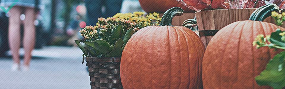 Zo'n 48% van de Italianen viert Halloween.