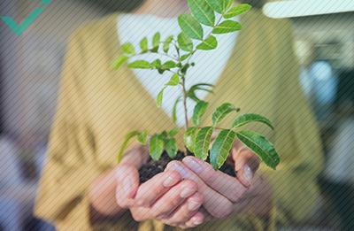 E-commerce en klimaatbescherming: wat kunt u doen?